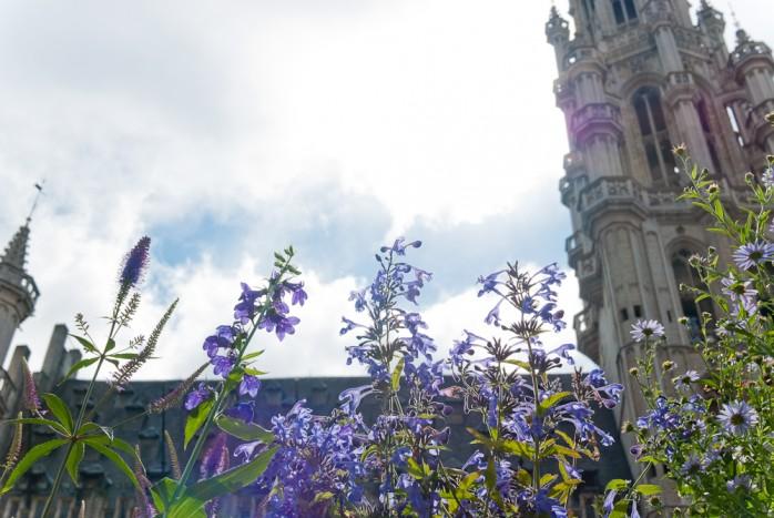 La Grande Place, Brussels
