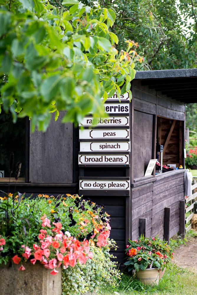 Peterley_Farm_Buckinghamshire-1