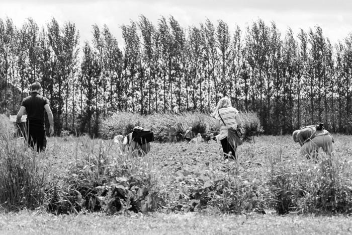 Peterley_Farm_Buckinghamshire-17