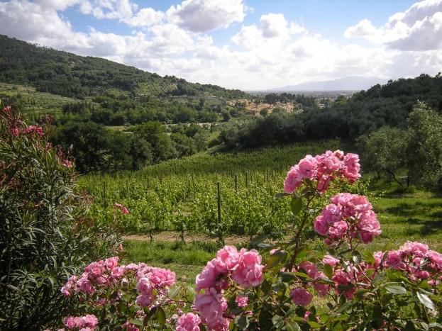 Pistoia-Tuscany-Italy-38