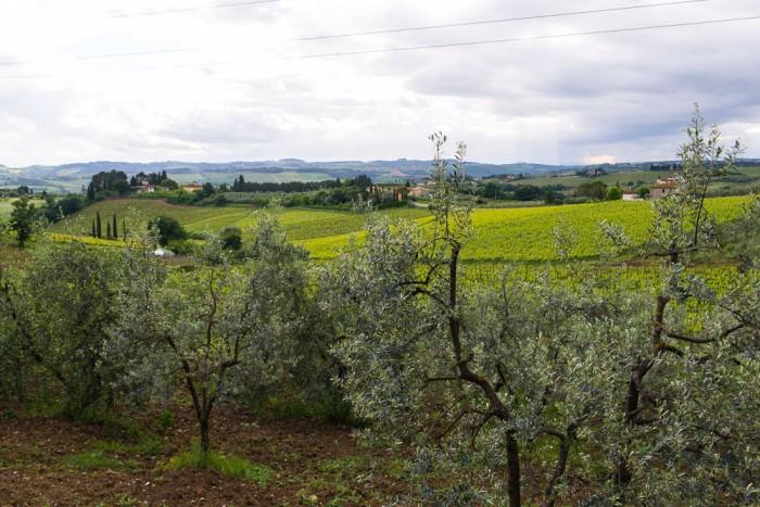 Tuscany-Travel-Day-One-2