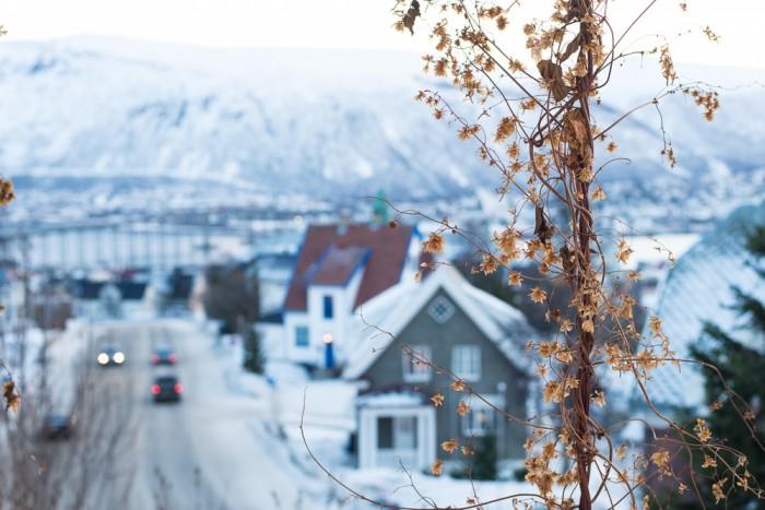 Tromso_Norway_Day2-2