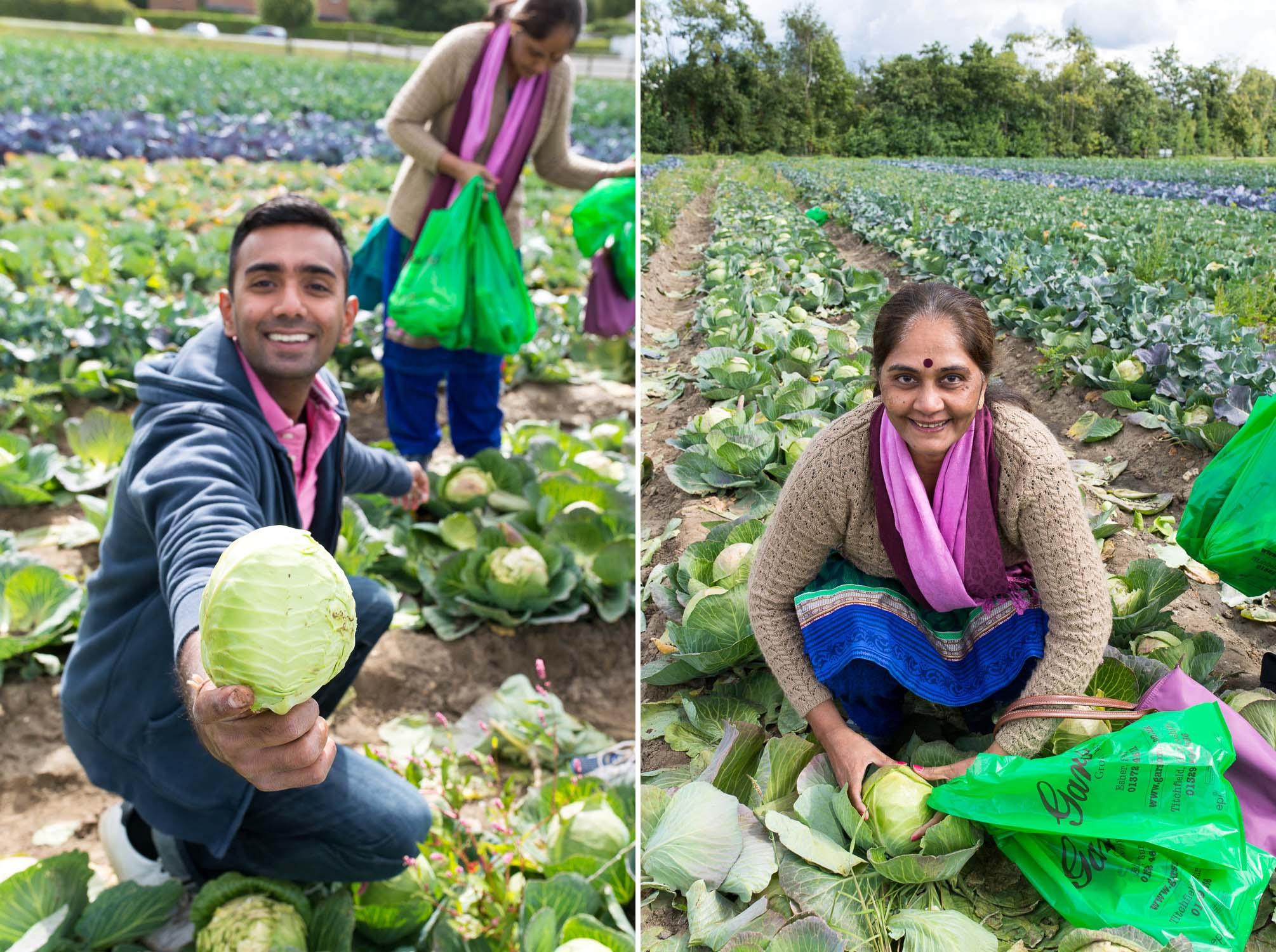 Garsons PYO Farm in Surrey