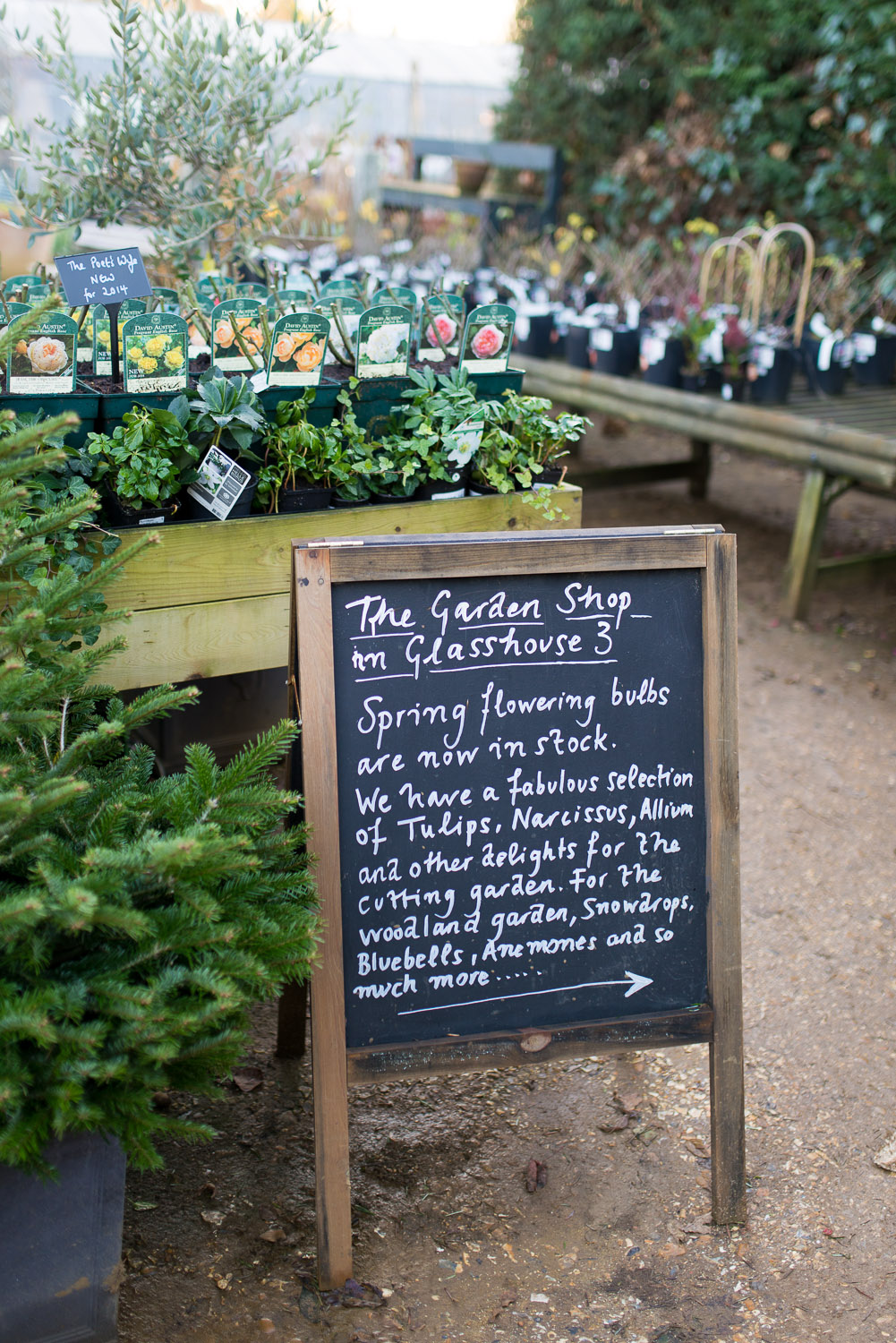Petersham-Nurseries-Richmond-1