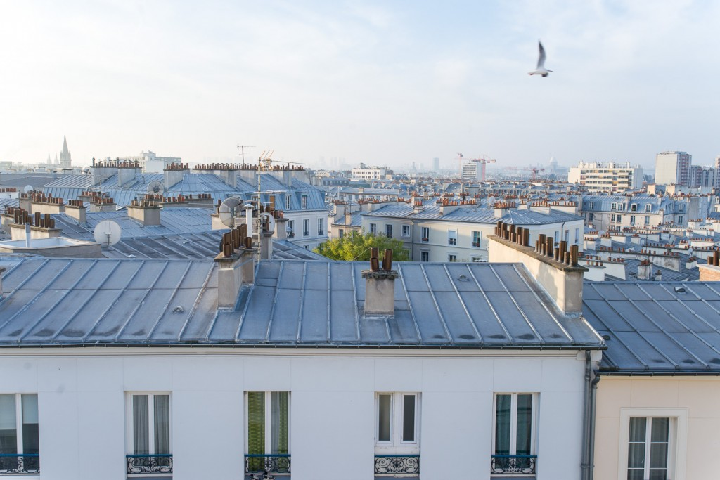 The iconic blue rooftops of Paris, as seen from Belleville neighbourhood