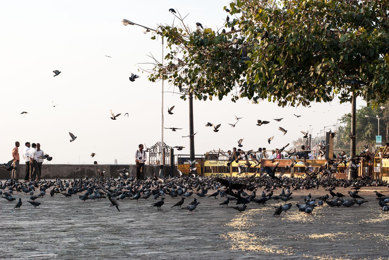 Dawn-South-Mumbai-India-8
