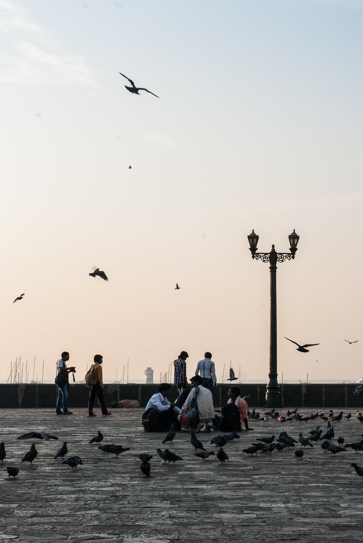 Dawn-South-Mumbai-India-9