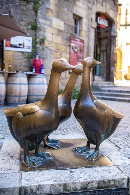 sarlat-goose-square-france-1