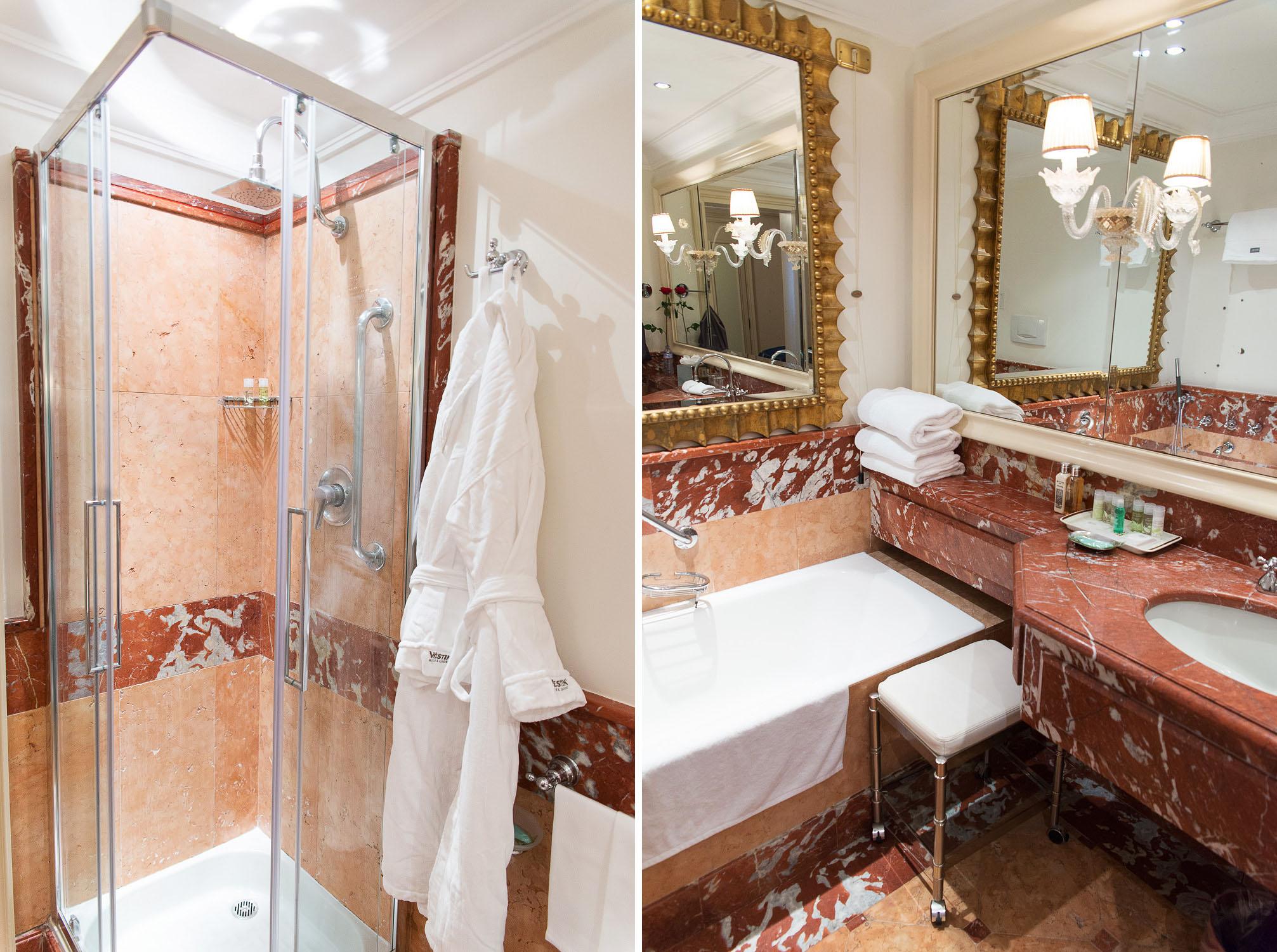 Westin Hotels & Resorts - Westin Europa and Regina in Venice