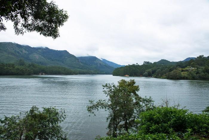 Munnar-Visit-Kerala-13