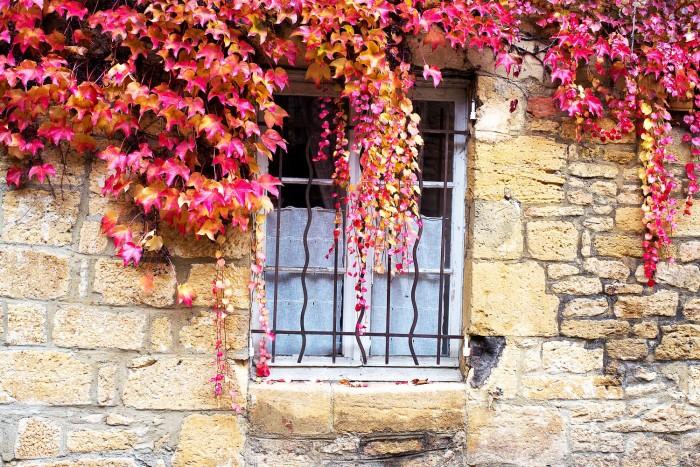 autumn-sarlat-dordogne-france