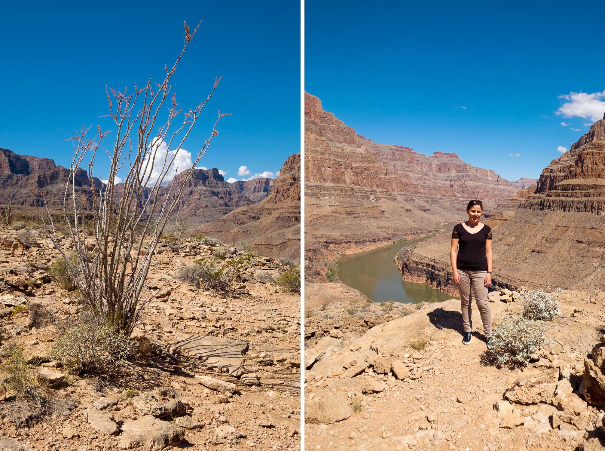 Giulia Grand Canyon Arizona