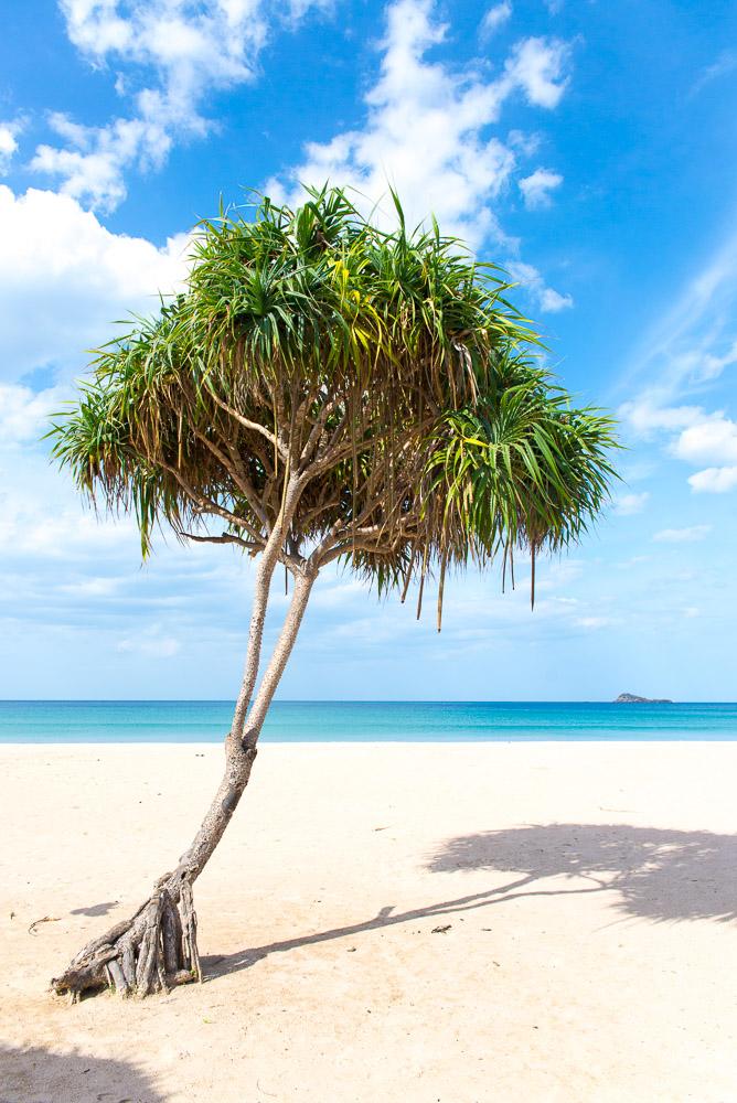 Nilaveli-Beach-Resort-1-3