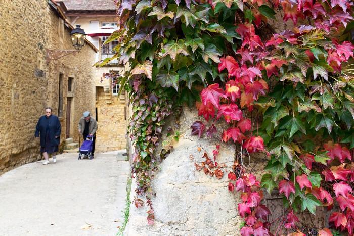 Sarlat-Perigord-Noir-Dordogne-2