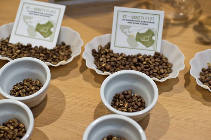 World-of-Coffee-2016-2