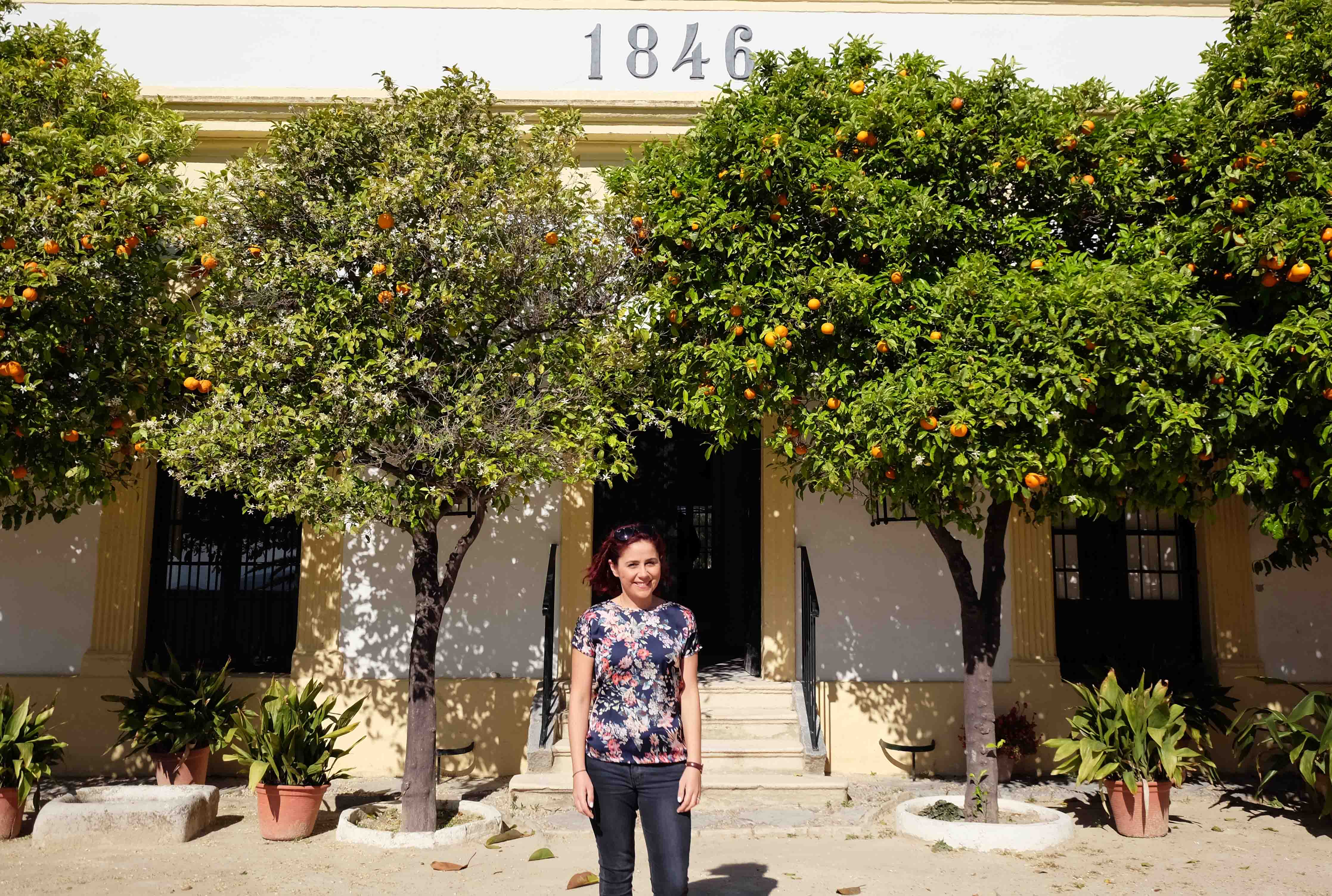 A Sherry Adventure in Jerez with Tio Pepe