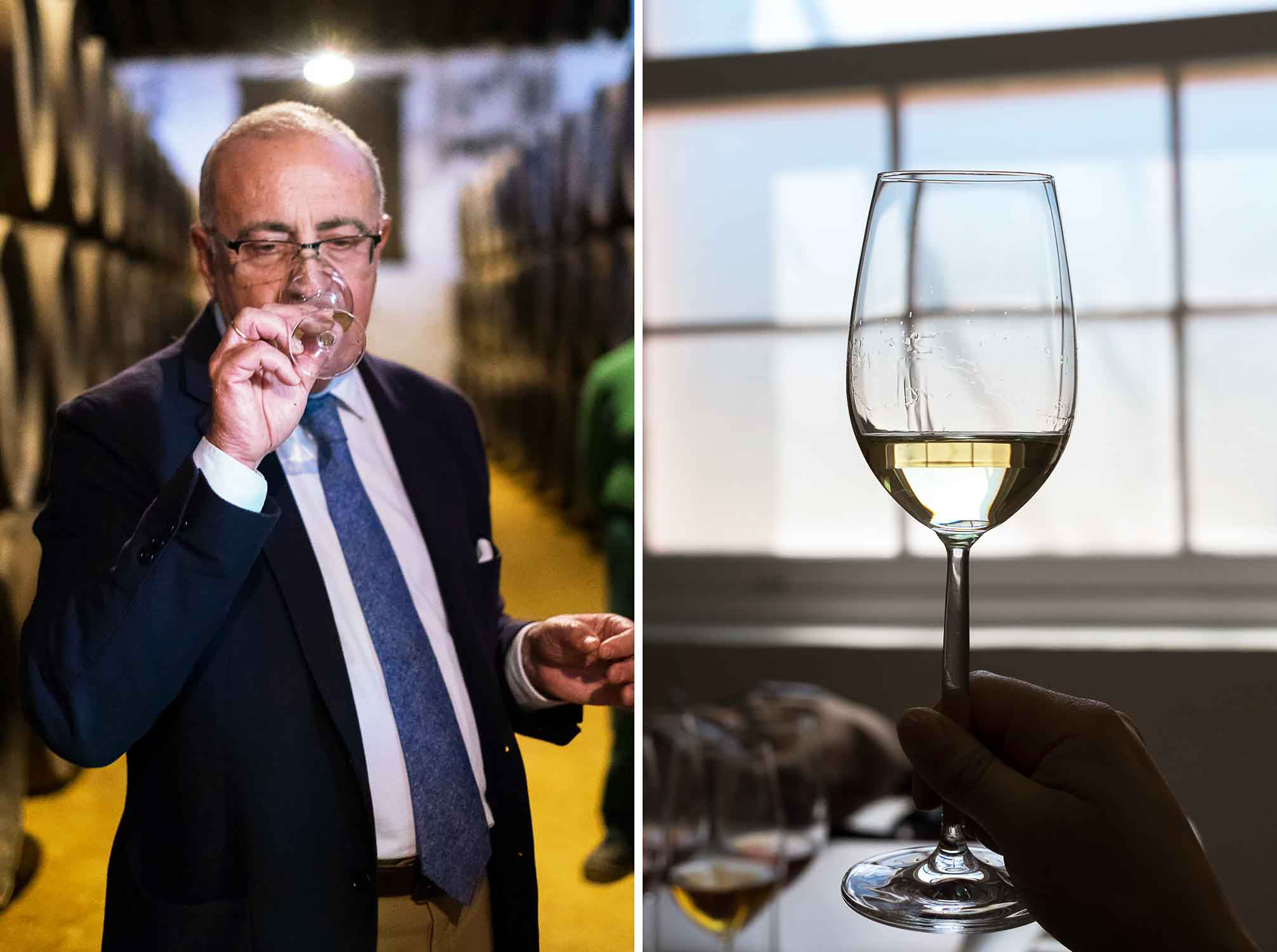 Tour of Tio Pepe sherry wine / Gonzalez Byass Winery in Jerez de la Frontera, Spain