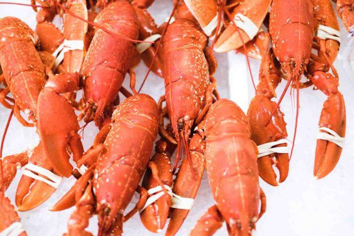 Beresford Street Fish Market in Saint Helier - A Culinary Getaway in Jersey, Channel Islands