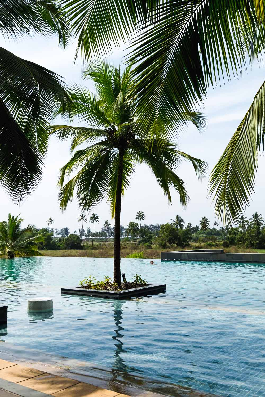 Infinity Pool at Alila Diwa Goa Resort in India