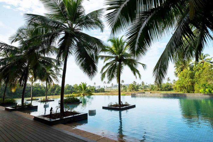 The infinity pool at Alila Diwa Goa set amidst lush paddy fields | My Dream Holiday in Goa with Alila Diwa Resort