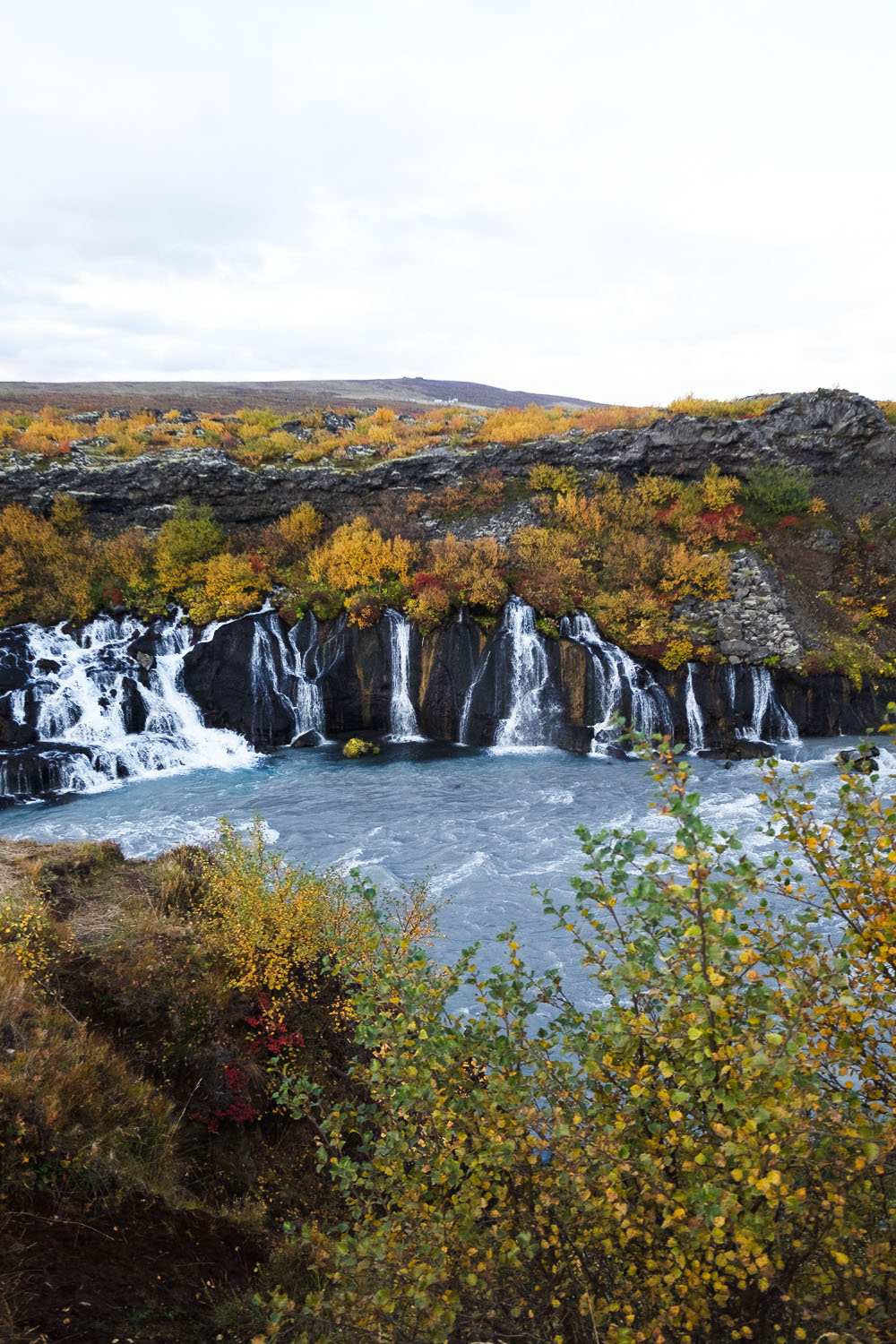 Hraunfossar waterfalls in West Iceland are formed by rivulets streaming over a distance of about 900 metres out of the Hallmundarhraun, a lava field which flowed from an eruption of one of the volcanoes lying under the glacier Langjökull.