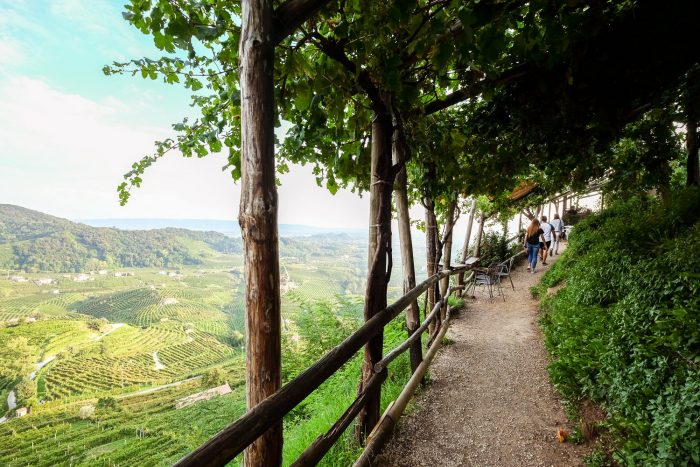 The view over Cartizze valley in Valdobbiadene, Veneto, from Osteria senz'Oste