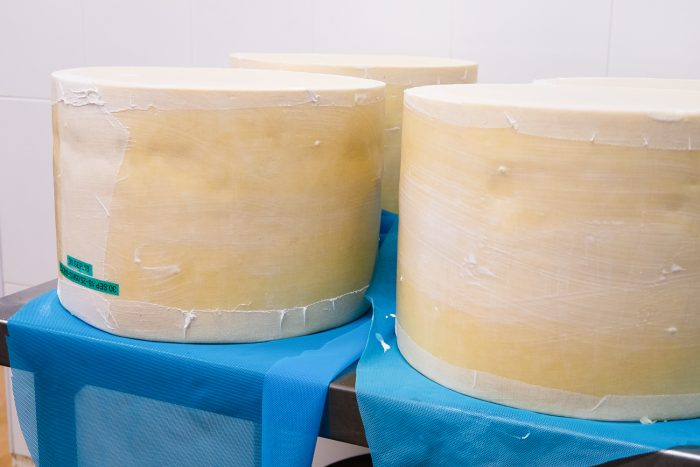A Day in Cheddar with The Cheddar Gorge Cheese Company