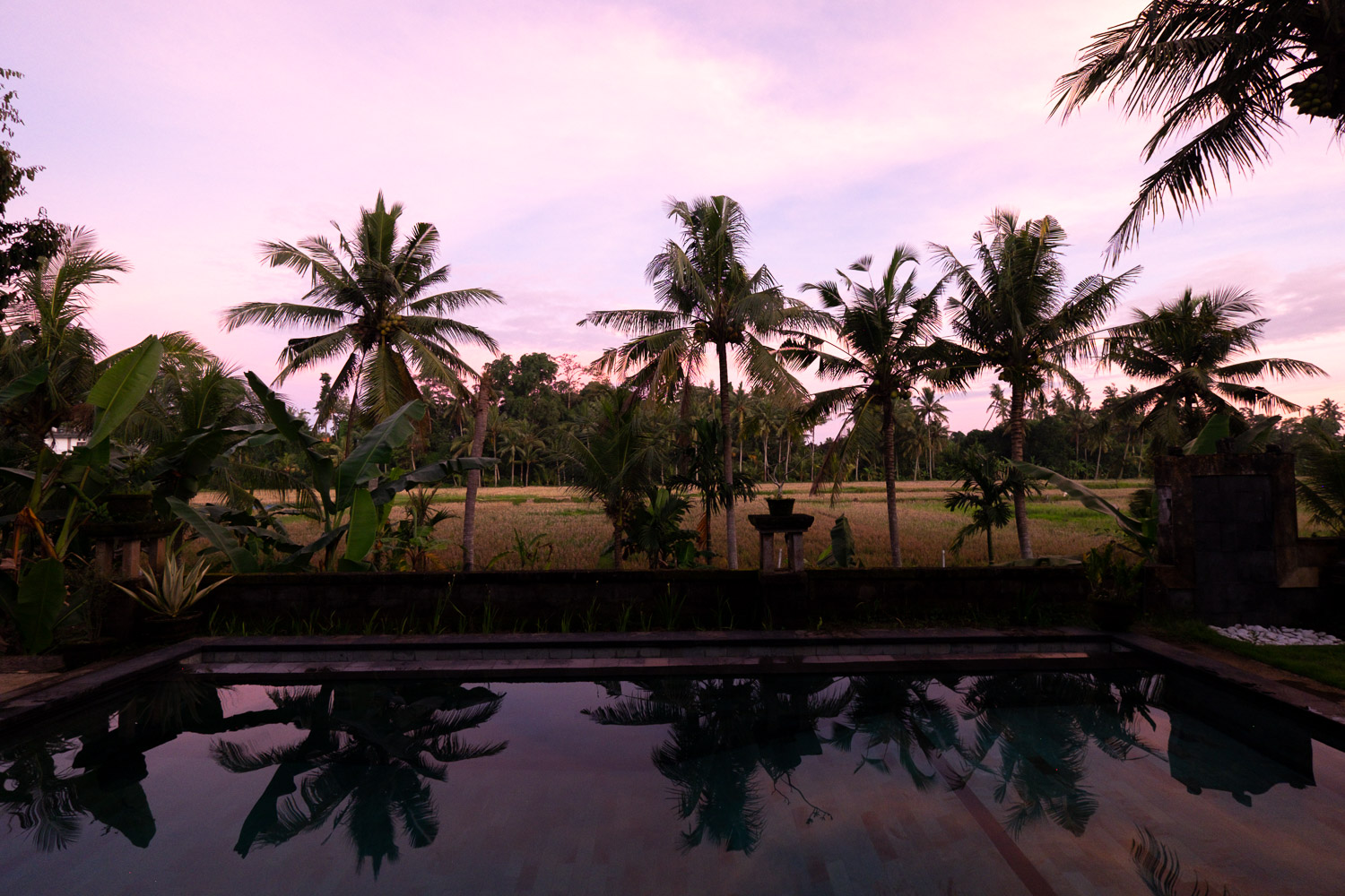 The view from my villa in Ubud Bali