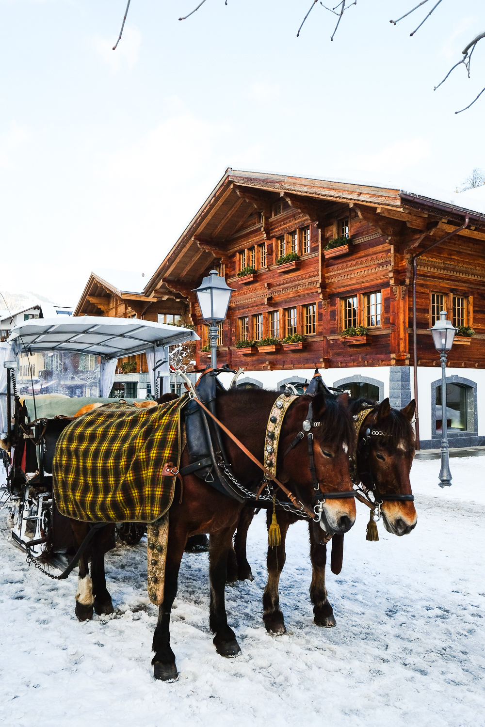 Horse-carriages in the charming town of Gstaad in south-western Switzerland is a popular holiday destination for ski lovers and for the International jet-set