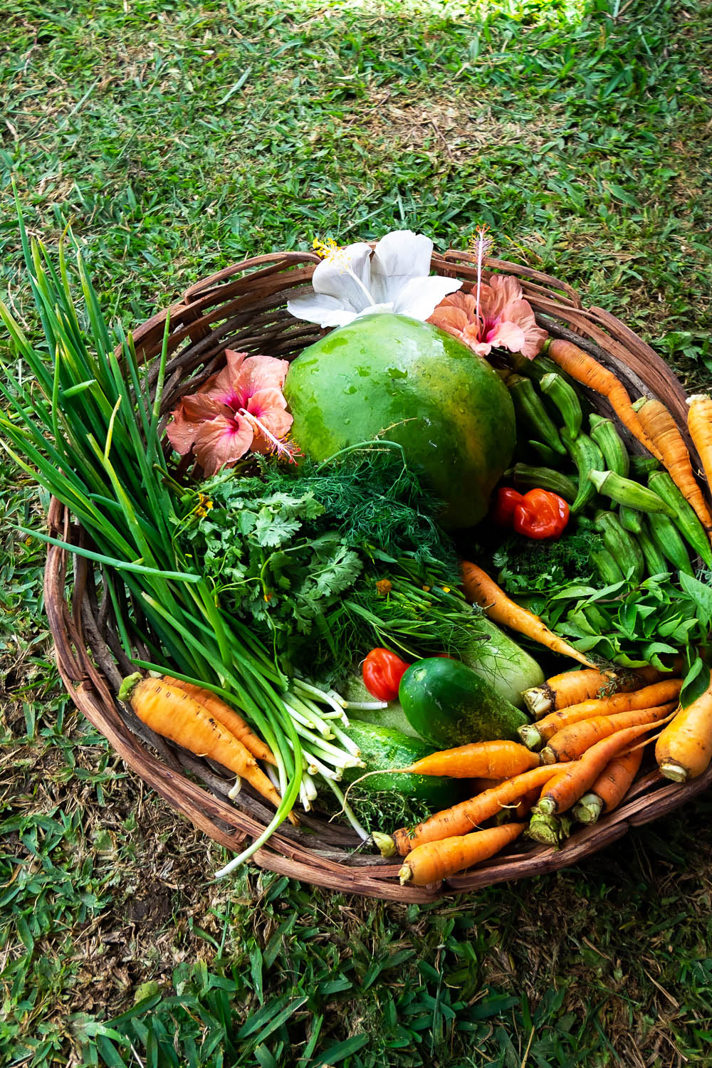 Locally sourced produce at PEG Farm | A 5-Day Itinerary of What to See and Eat around Barbados