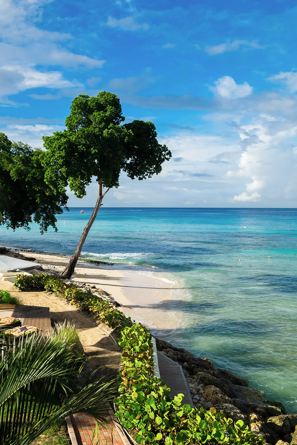 Paynes Bay | A 5-Day Itinerary of What to See and Eat around Barbados