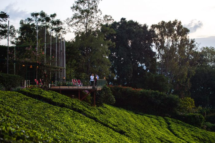 Sorwathe Tea Factory and Guesthouse are located in Kinihira, northern Rwanda