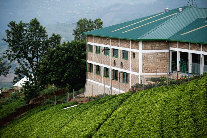 Sorwathe Tea was founded by Joe Wertheim of Tea Importers Inc. and is the number one tea brand within Rwanda. Sorwathe produces approximately 12% of Rwanda's tea. Over the decades, it has created over 3,000 employment opportunities for the community around Kinihira.