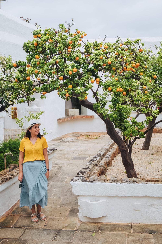 Orange trees at Masseria il Melograno, Small Luxury Hotels, in Monopoli   A 7-day Road Trip Through Puglia and Matera   Mondomulia