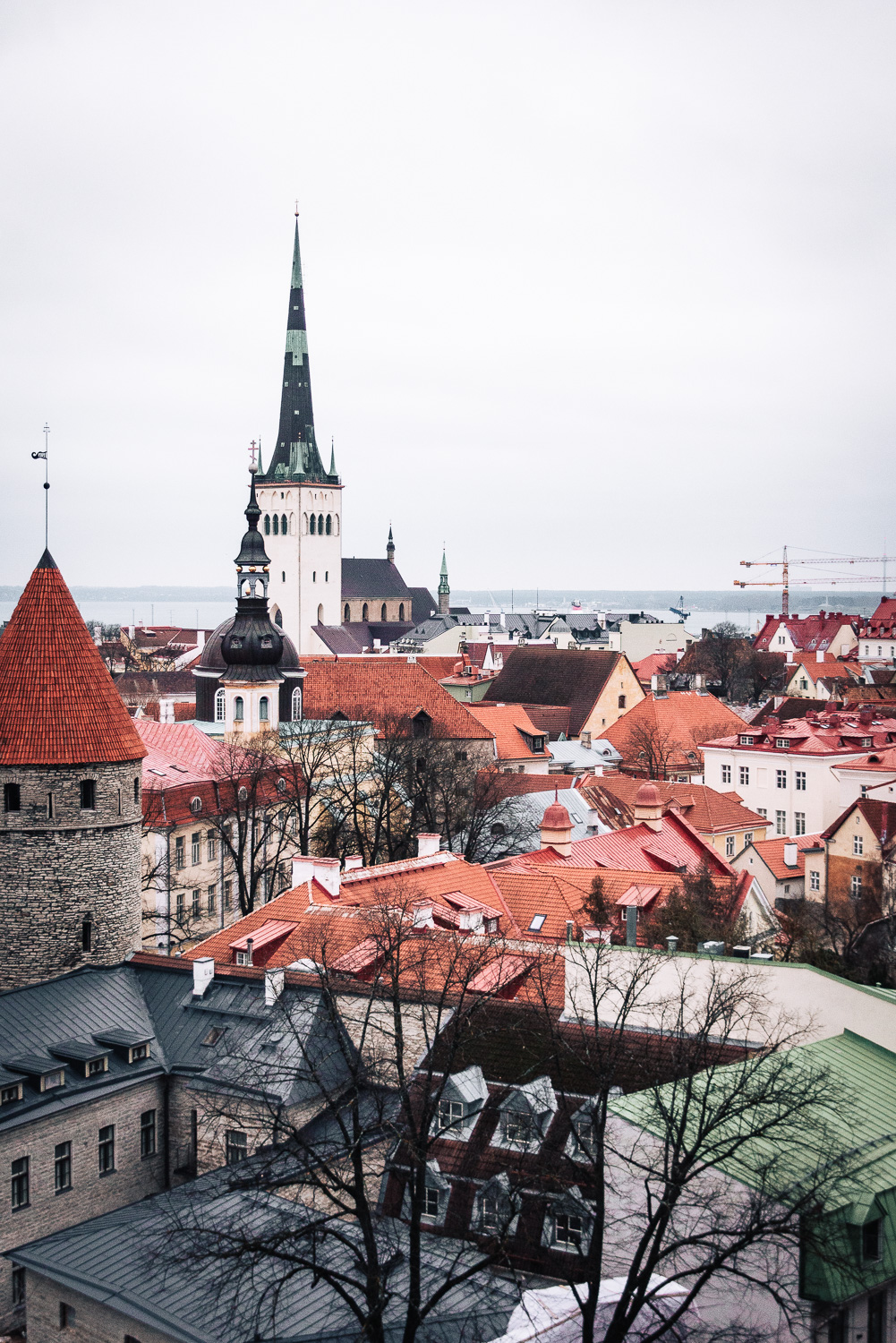 A view of Tallinn's Old Town from Patkuli viewing platform | A day trip to Tallinn from Helsinki