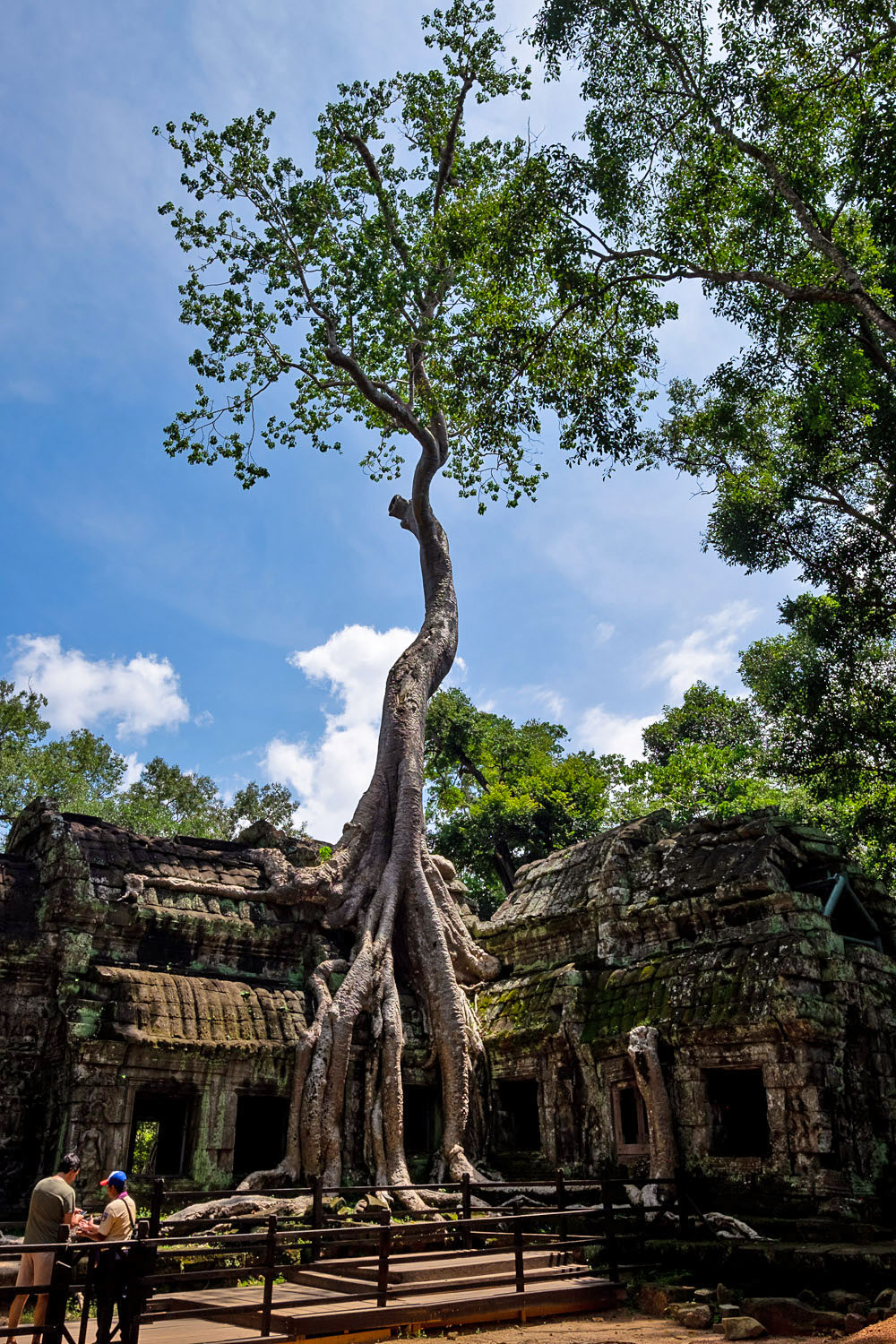 "Ta Prohm, aka ""Tomb Raider"" temple, is one of the most recognised temples of the Angkor Wat temple complex 