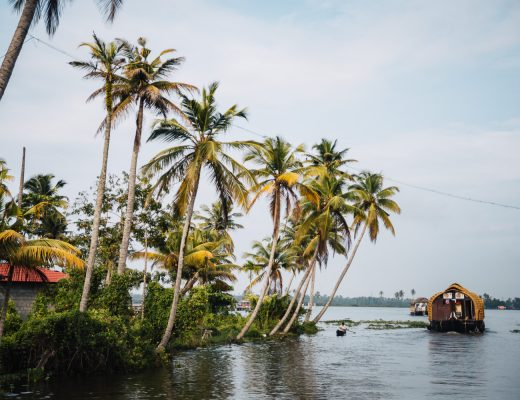 Cruising along the backwaters in Alleppey in Kerala | 5 Epic Things To Do in Kerala