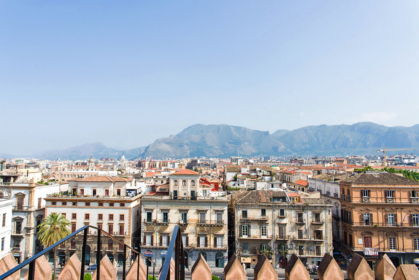 View of Palermo from the rooftop of the city's cathedral | Sicily, Italy
