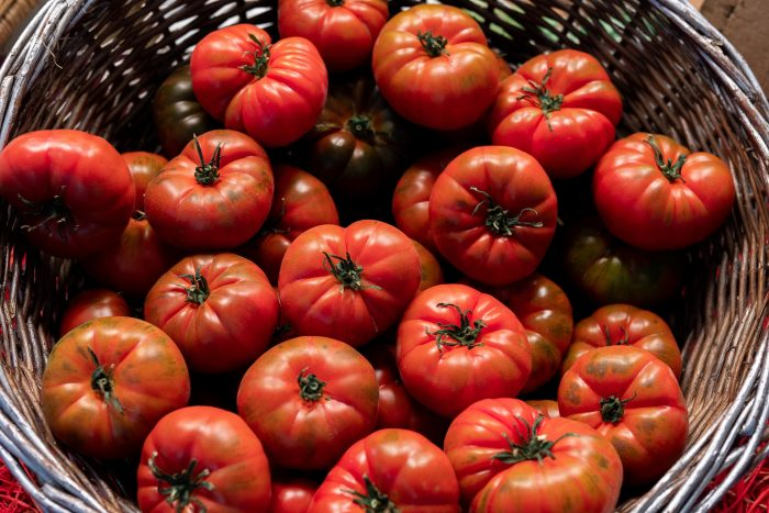Basket of red tomatoes